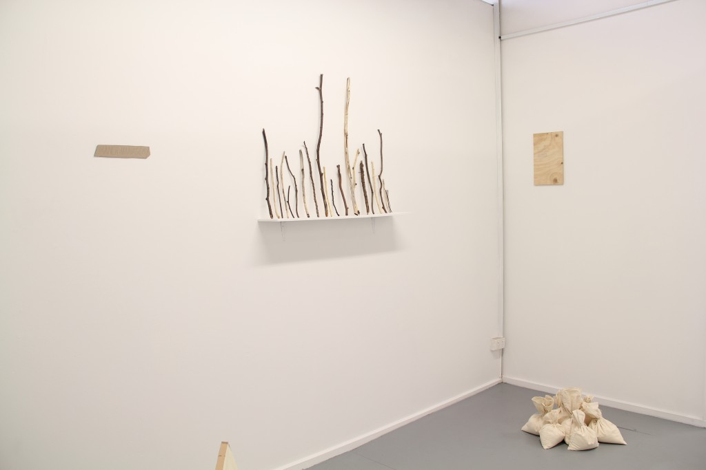 Branch Manager installation view